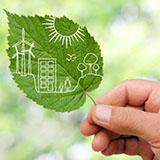 T. Stern Sustainability LLC